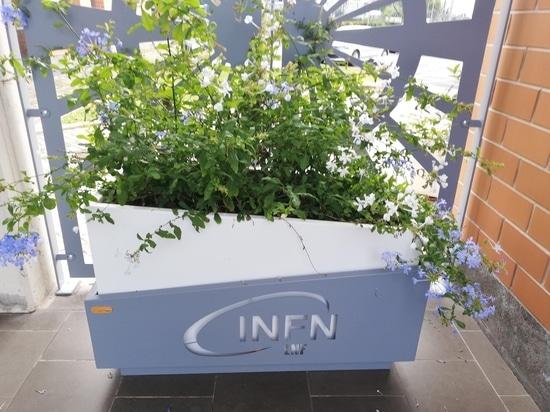 INFN Nationales Institut für Kernphysik