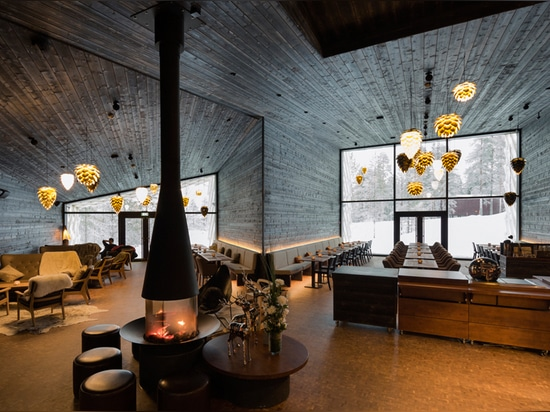 Das Arctic Treehouse Hotel lädt Sie zu einem gemütlichen Erlebnis ein