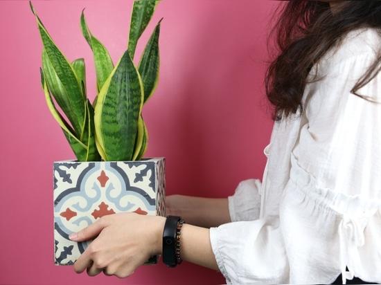 Einzigartiger Dekorationsartikel - Blumentopf aus handgemachter Zementfliese