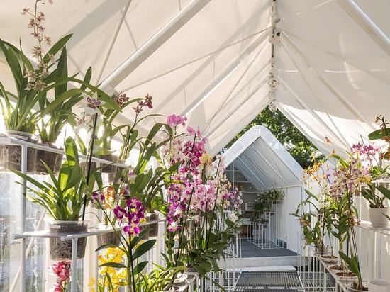 Gewächshaus Orchidee Punta del Este / Mateo Nunes Da Rosa