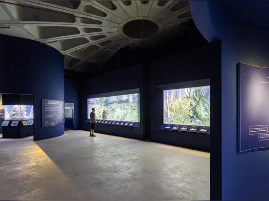 Hopkins Architects stellt Schildkröten- und Wildtierschutzgebiet in den VAE fertig