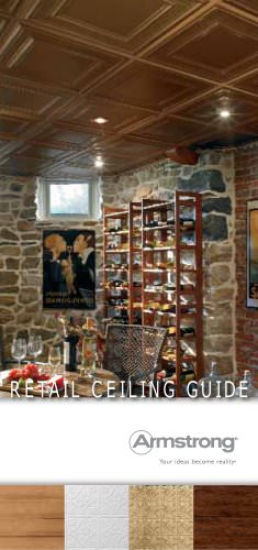 Retail Ceiling Guide