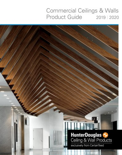 Commercial Ceilings & Walls