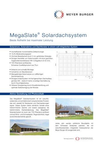 IN-ROOF/MegaSlate:FS MEGASLATE 165