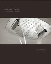 Concealed Colonial shower heads single&multi functions