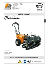 Cleanion